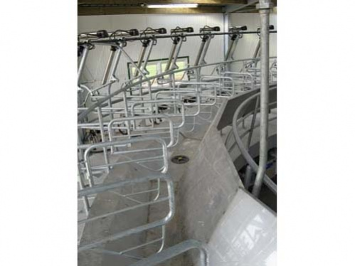 continuous stainless steel feeding trough