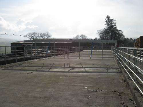backing gate (2)
